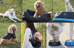 Inter Pets Collection, a new product line for our four-legged friends