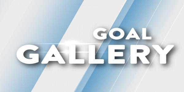 goal gallery