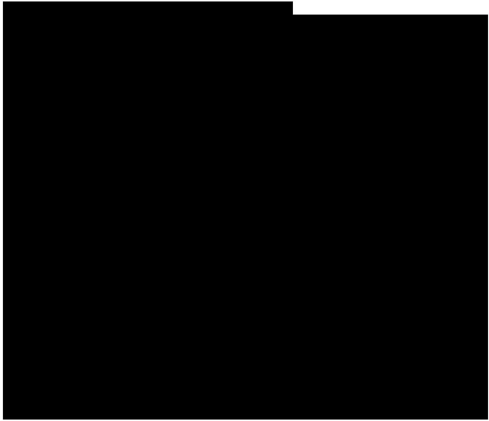 I tornelli di San Siro